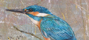 Kingfisher by Anne Mortimer